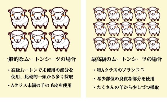 ムートンシーツのはたくさんの羊の毛皮のいい部分を使用